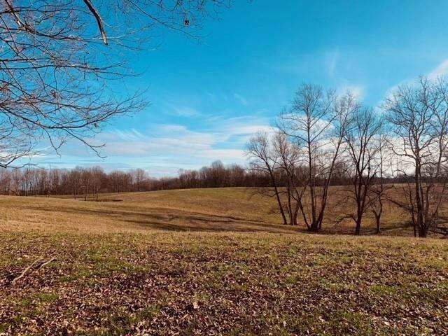 Agricultural Land for Sale at 93 Acres +- Old SR 37 N Harrodsburg, Indiana 47434 United States