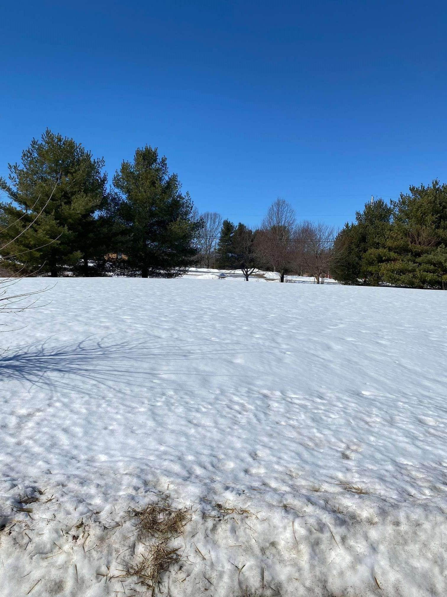 Residential Lots & Land for Sale at TBD Northern Acres lot 24 Ladoga, Indiana 47905 United States