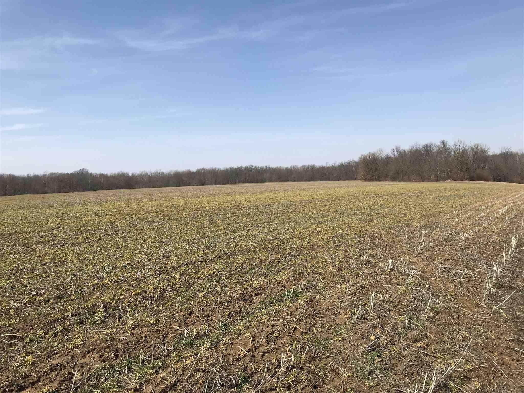 Agricultural Land for Sale at 106 Acres E CO RD 350 S Dugger, Indiana 47848 United States