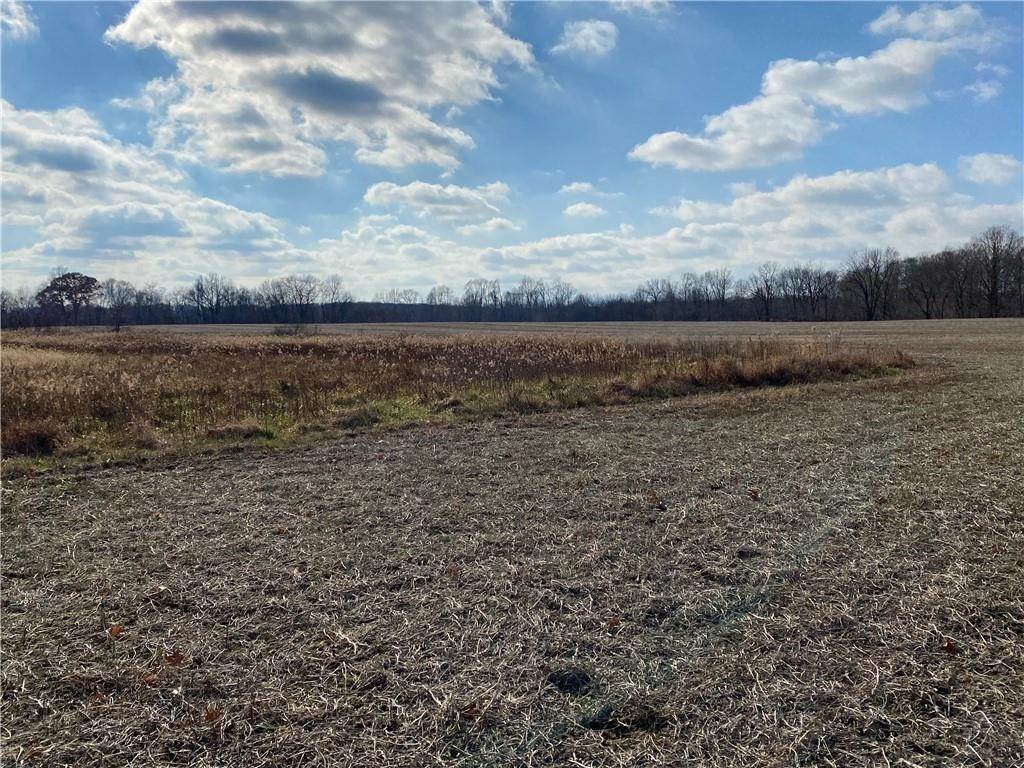 Land for Sale at 71 Marion Street Dana, Indiana 47847 United States