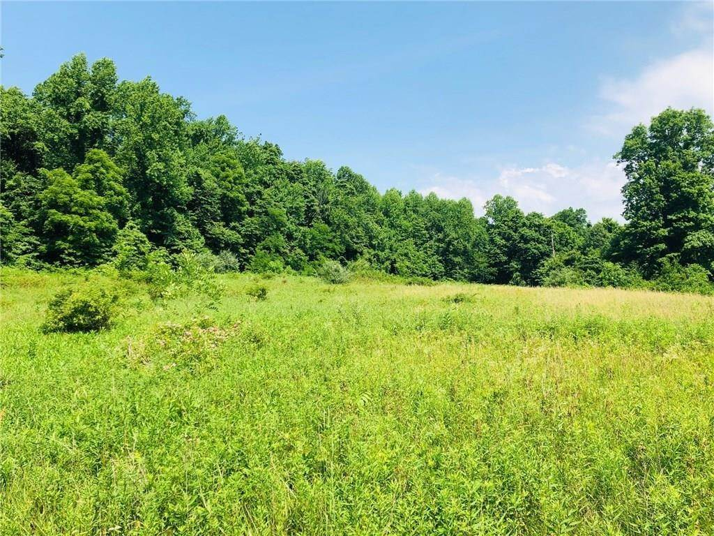Land for Sale at 6023 County Road 275 Greencastle, Indiana 46135 United States