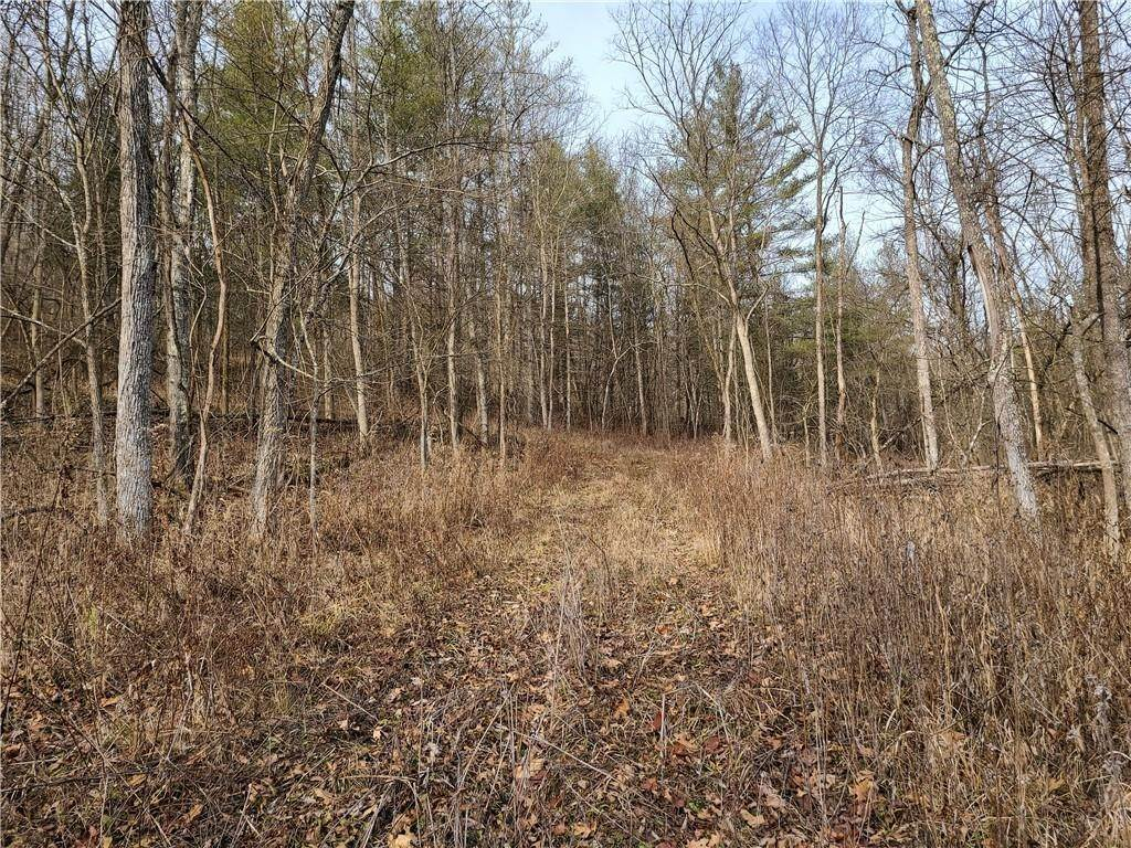 Land for Sale at Blue Creek Road Brookville, Indiana 47012 United States