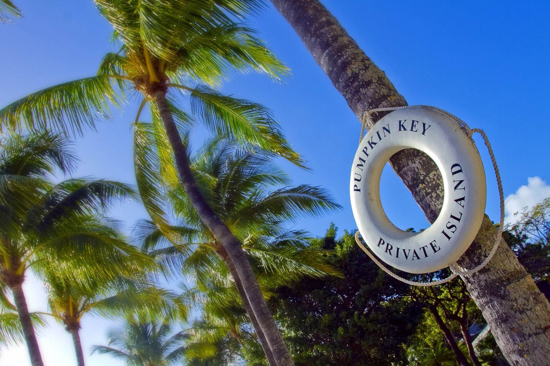 13. Property por un Venta en Pumpkin Key - Private Island, Key Largo, FL Pumpkin Key - Private Island Key Largo, Florida 33037 Estados Unidos